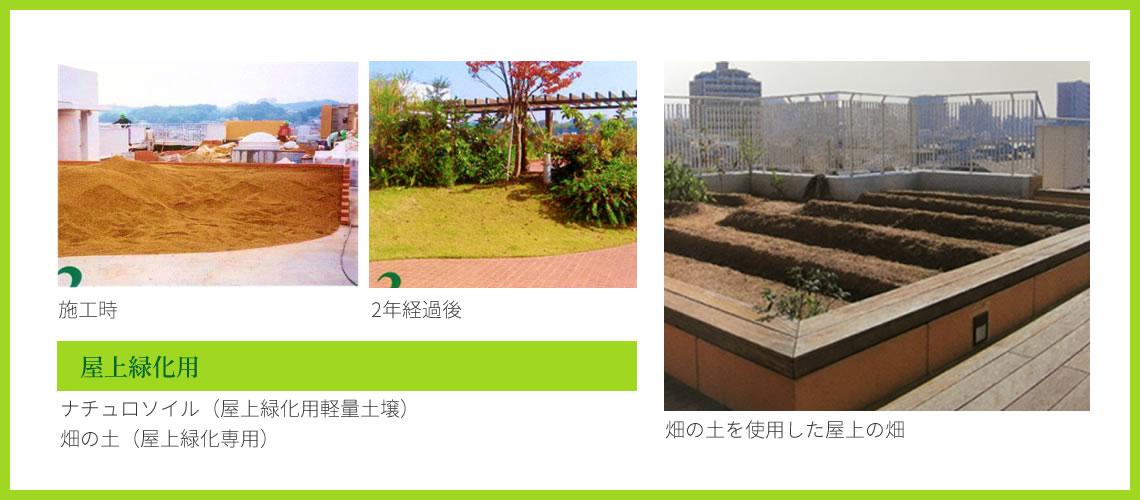 屋上緑化用 施工時 2年経過後 畑の土を使用した屋上の畑 ナチュロソイル(屋上緑化用軽量土壌)畑の土(屋上緑化専用)
